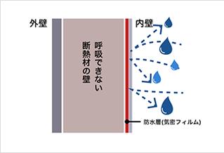 image3a
